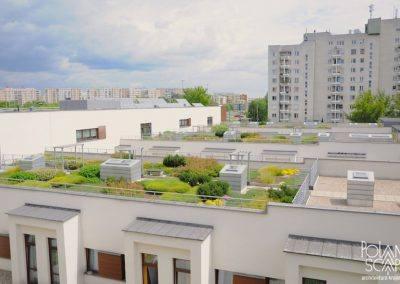 projekt koncepcyjny zieleni przy wielofunkcyjnym ośrodku dla osób z chorobą Alzheimera